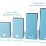 Marco común europeo de referencia para las lenguas